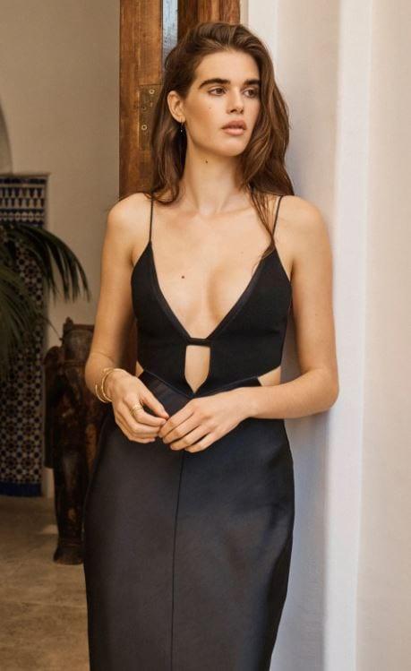 Seraphine Plunge Maxi Dress